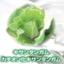 多糖類(増粘剤・分散剤・懸濁安定剤)『キサンタンガム』 製品画像