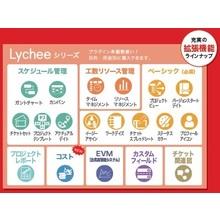 プロジェクト管理ツール『Lychee Redmine』 製品画像