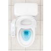 洋式トイレ 消臭洗浄剤『インタンク』 製品画像