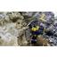 斜面安全掘削工法(SSD工法) 製品画像