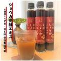 『発酵しょうがシロップを使ったPB商品・OEM商品の受託製造』 製品画像