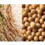 機能性食品原料 オリジナル原料『CELABIO-F』 製品画像