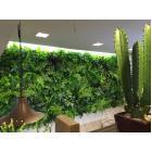『ぴたっとグリーン』マグネット式 壁面緑化装飾システム 製品画像