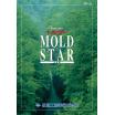 土木用樹脂化粧型枠『モールドスターシリーズ』 施工事例集 製品画像