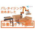 【AUBO動画】協働ロボットでパレタイジングしませんか? 製品画像