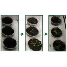 中性固化材 『グリーンライムNP』 製品画像