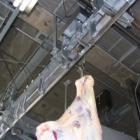 枝肉計量機 製品画像