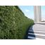 【施工事例】サービスエリアの入口を緑化 製品画像