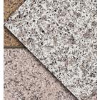 水性自然石調多彩模様塗料『グラニクイーンシリーズ』【責任施工】 製品画像