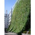 【省エネ・節電にも】マップ式緑化システム 製品画像
