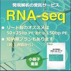 受託解析『RNA-seq』※基礎から分かる小冊子進呈! 製品画像