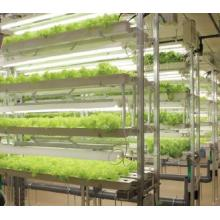 植物生産システム『閉鎖型植物工場』 製品画像