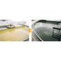 新成分配合の活力栄養剤「エルビックYP」 製品画像