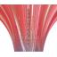フィンチューブ式熱交換器がわかる!ビギナーズガイド 製品画像