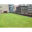 ホテル・病院・商業施設など様々な屋上緑化 製品画像