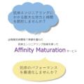 抗体親和性向上サービス『Affinity Maturation』 製品画像