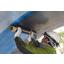 ガイナCFシート工法 〔構造物補強・はく落防止対策〕 製品画像