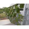 ユニット型壁面緑化システム『パラビエンタ』 製品画像