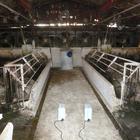 【においの脱臭事例】畜産(養豚・養鶏場) 製品画像