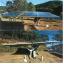 太陽電池架台『ウィングシステム』 製品画像