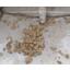 泡で分離された油はこうなります!油煙除去装置『イオレス』 製品画像