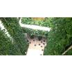 壁面・屋上緑化 製品画像