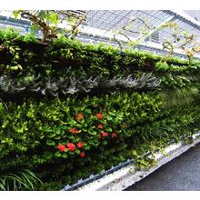 壁面緑化『D's グリーンプランター』 製品画像