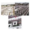 高橋カーテンウォール工業株式会社 会社案内 製品画像