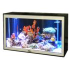 バーチャル水槽『魚八景4K』 製品画像