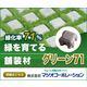 コンクリート製舗装材『グリーン71』 製品画像