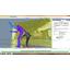 モーションキャプチャ『Desktop MOCAP iPi 4』 製品画像