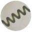 機能性食品『スピルリナ』 製品画像