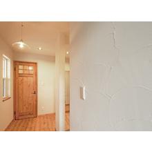 ゼオライト内装塗り壁材『AZwall(エーゼットウォール)』 製品画像