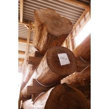 音響熟成木材 製品画像