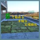 苔(コケ)で始める手軽な工場緑化 製品画像