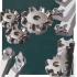 切削工具シリーズ『タングフォース』 製品画像