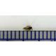 昆虫種の遺伝子同定 製品画像