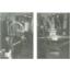 全自動定量式ラインフィラー 製品画像