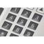 メンブレンスイッチ 表面シートのエンボス加工 製品画像