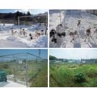 獣害防止柵(簡易防護柵)『WMドッグラン』 製品画像
