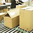 【導入事例】通信販売向け宅配出荷段ボール箱への詰め合わせ自動化 製品画像