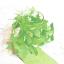 【デザイン事例】緩衝材『LAVES-MiNi リーヴスミニ』 製品画像