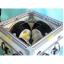 2軸XY 電磁石『TM202-70760XY』 製品画像