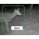 定点カメラ解析代行サービス 製品画像