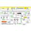 【開発事例】選果システム(トレーサビリティ) 製品画像