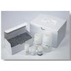 高純度・高収量 環境試料DNA抽出キット   ※試供品提供可能  製品画像