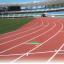 IAAF認証舗装材『レヂンエース(R)』 製品画像