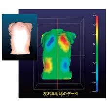 ボディバランスモニター【3Dスキャンで歪みを可視化!】 製品画像
