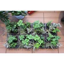 緑化商品『バルガーデン』 製品画像