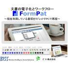 FormPat.jpg